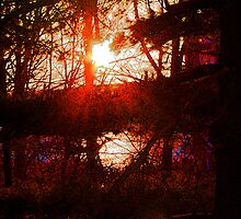 """Stained Glass Sunset on The Hudson  by David """"Oz""""  Osterczy"""
