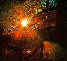 "Speckled Sunset by David ""Oz""  Osterczy"