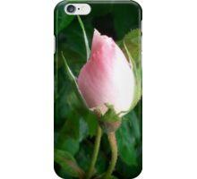 Pink Rose Bud 2 iPhone Case/Skin