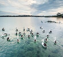 New Haven, Phillip Island by WavesPhotograph