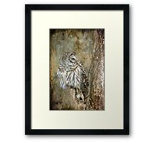 Textured Owl Framed Print