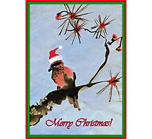 Merry Christmas to all my RB Friends! Photographic Print