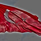Turkish Flag by jwdolgos