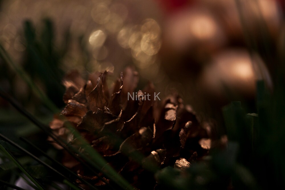 Merry Christmas! by Ninit K