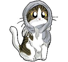Kitty with scarf Photographic Print