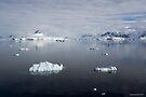 Reflecting on Antarctica 074 by Karl David Hill