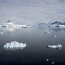 Reflecting on Antarctica 074 by Karl David Hill
