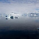 Reflecting on Antarctica 076 by Karl David Hill