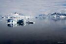 Reflecting on Antarctica 077 by Karl David Hill