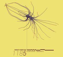 Radiata Series 001-1185 (purple) by mkmori