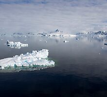 Reflecting on Antarctica 081 by Karl David Hill