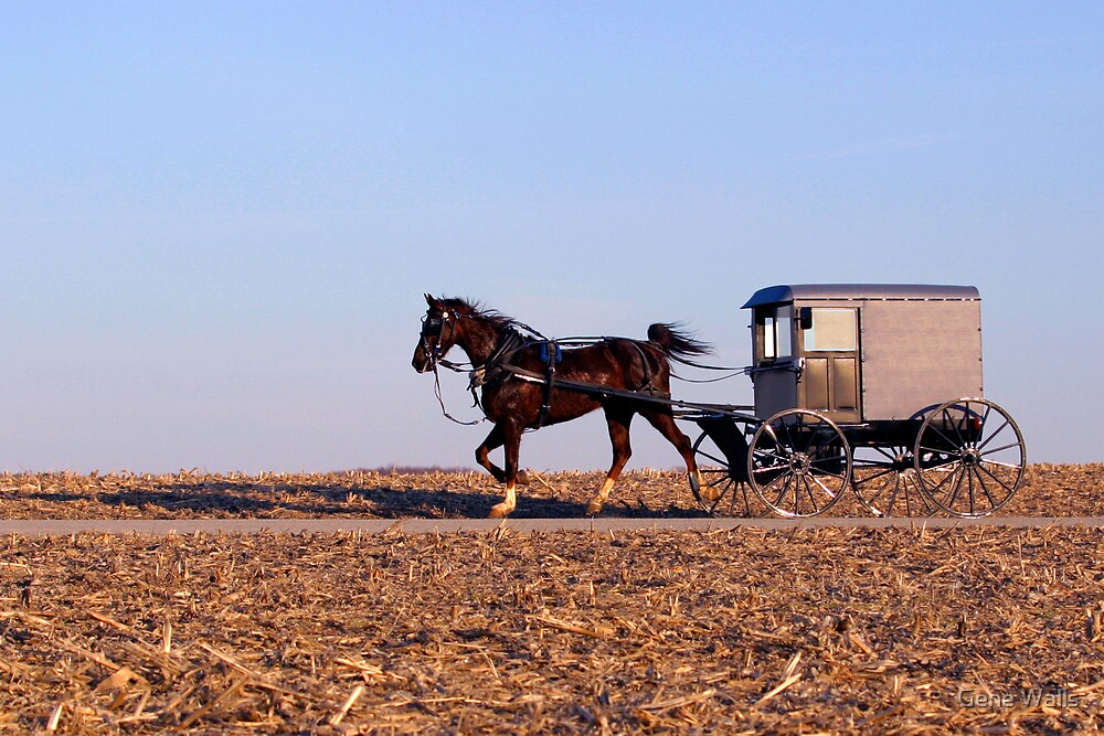 Amish Commute by Gene Walls