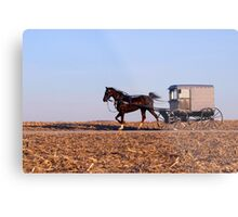 Amish Commute Metal Print