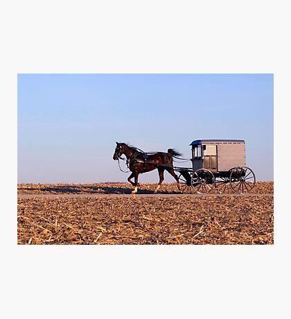 Amish Commute Photographic Print
