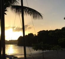 Palm Sunset Sticker