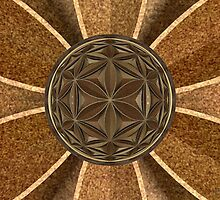 Flower of Life Through a Drop by David M. Voutsinas