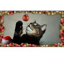 Merry Christmas!!! Photographic Print