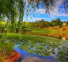 Pughs Lagoon Vista by geomar