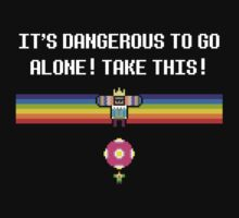 It's dangerous to go alone! by rydiachacha