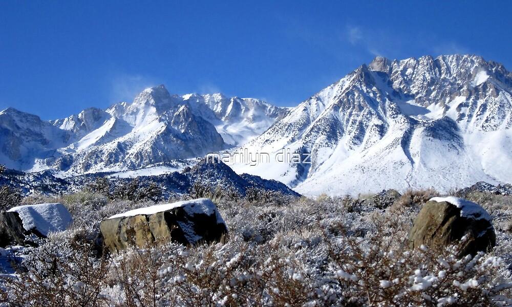 Scenic Sierra Snow Scene  by marilyn diaz