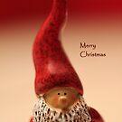 Christmas Card 8 by vbk70
