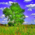 Tree by EBArt
