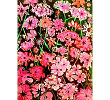 Pink Flower Etching No.1 Photographic Print