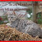 The Lord will watch over you.. by Elaine Game