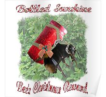 Bee's Christmas Reward Poster