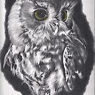 Owl by Karen Townsend