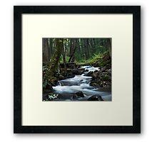 Tillman's Ravine  Framed Print