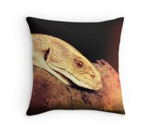Bosc Monitor Throw Pillow
