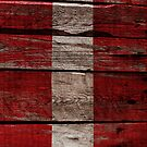 Vintage Austria Flag - Cracked Grunge Wood by UltraCases