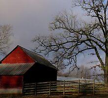Berrvine Barn by BerryvineImage
