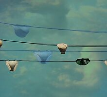 Underwear on a washing line  by Jasna