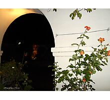 Archways of Old Monterey/Christmas in the Adobes III Photographic Print
