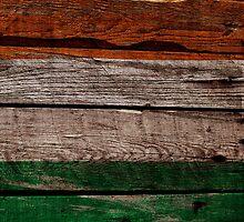 Vintage Ireland Flag - Cracked Grunge Wood by UltraCases