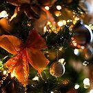 Christmas Tree by Luke Stevens