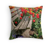 Abducted Park Bench Throw Pillow