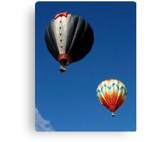 Formal Flight Canvas Print