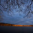 Xmas Light by photosbytony