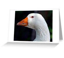 Baby Blue Eyed Goose Greeting Card