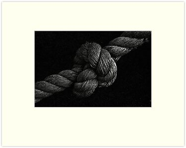 Knot by Jeffrey  Sinnock