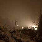 A Canadian National Train Westbound In The Snow by RNicholas