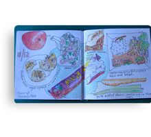 from the food diary: raw food bar Canvas Print