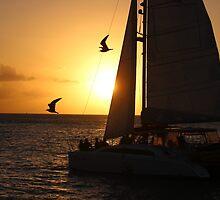Sailing Sunset by Karen Harris