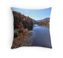 Down a Lazy River Throw Pillow