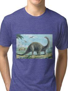 Brontosaurus Tri-blend T-Shirt