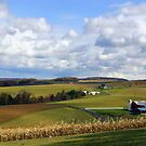 Farmland's Rolling Hills by Gene Walls