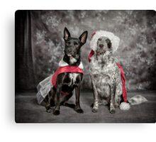 Ready For Christmas Ball Canvas Print